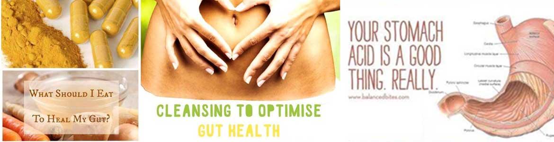 digestion-gut-health-talk