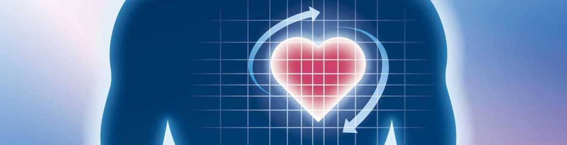 Heart Rate variability And How to Influence it